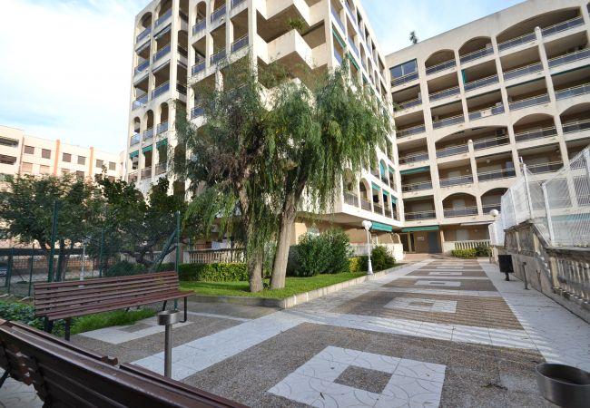 Apartment in La Pineda - TURQUESA 5