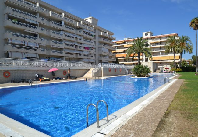 Apartment in La Pineda - AGUAMARINA 3