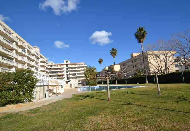 Apartment in La Pineda - AGUAMARINA 4