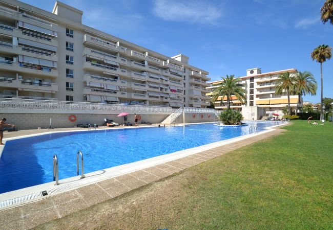 Apartment in La Pineda - AGUAMARINA 4