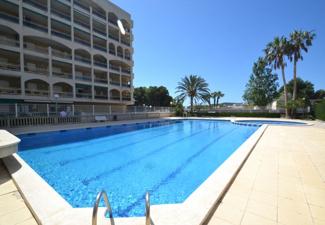 Rental apartment with swimming-pool close to beach