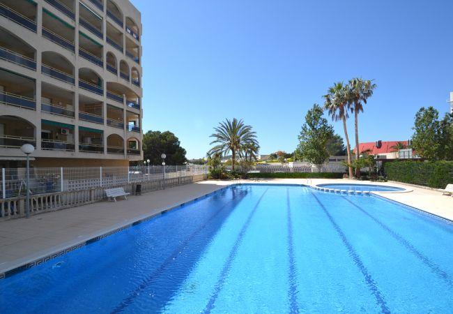 Apartment in La Pineda - TURQUESA 2