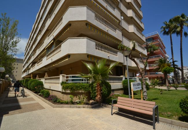 Apartment in La Pineda - ALBENIZ 2