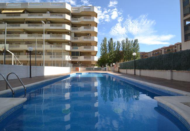 Apartment in La Pineda - ALBENIZ 3