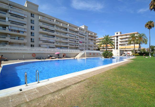 Apartamento en La Pineda - AGUAMARINA 4