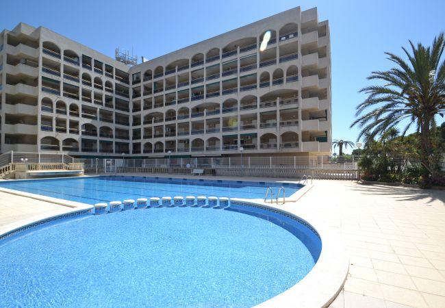 Apartamento climatizado con piscina cerca playa