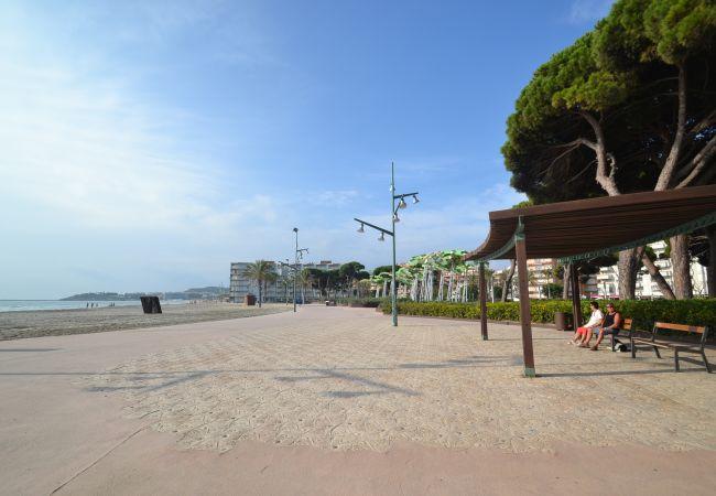Appartement à La Pineda - CINCO VILLAS