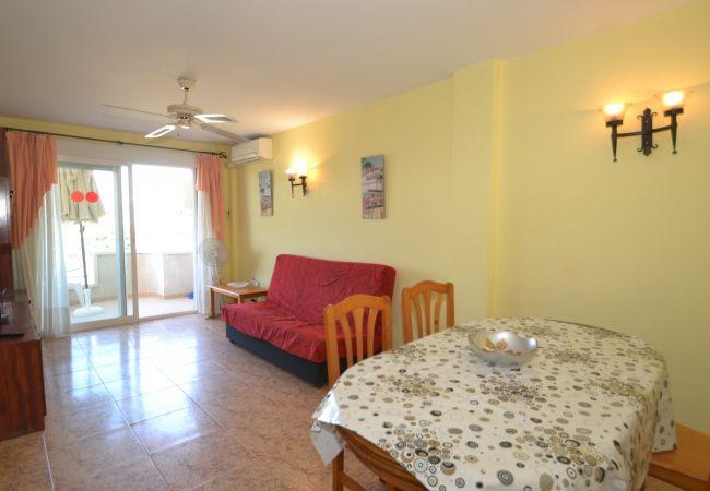 Appartement à La Pineda - MARINTERNUM A