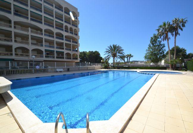 Appartement climatisé avec piscine