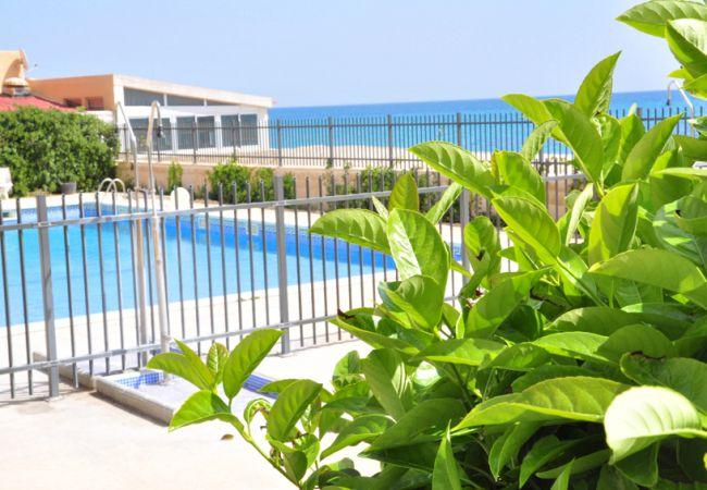Appartement à Miami Playa - RIVIERA I 2 4