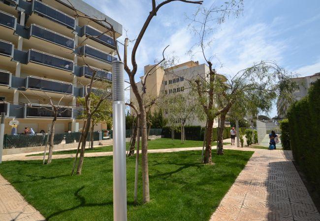 Appartement à La Pineda - NOVA PINEDA AS 3HAB 321