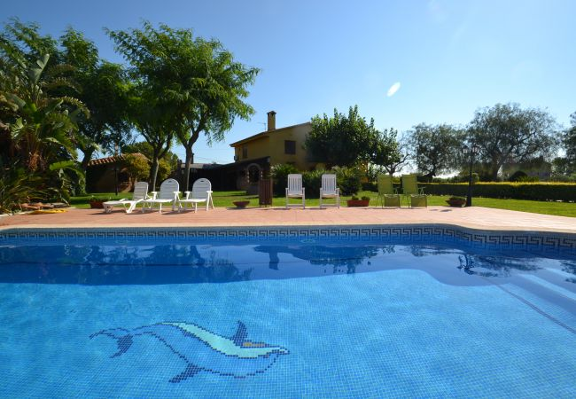 Villa à Selva del Camp - MAS ALING