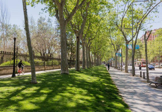 Appartement à Barcelone - CIUTADELLA PARK, 4 double bedrooms, top views